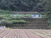山谷裡的家(和平農場):P6240308