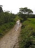 南仁湖、龍坑、台東利嘉(Day 2 墾丁、台東):P3210581