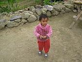 會走路的樹~巒山部落:P3220317
