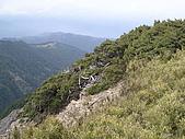 合歡北峰、西峰:P3310271