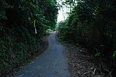 大屯溪古道&小觀音西峰:DSC_0028