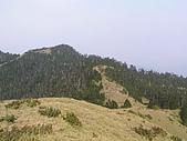 合歡北峰、西峰:P3310119