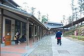 杉林溪景點&鹿谷鄉內湖國小:DSC_2533.JPG