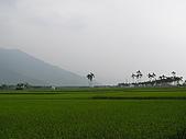 關山環鎮自行車道:PA070493