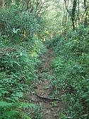 荖蘭山(佛教聖地靈鷲山):PC240196
