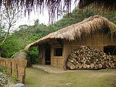 會走路的樹~巒山部落:P3220302