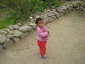 會走路的樹~巒山部落:P3220319
