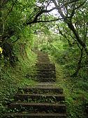 桃源谷步道-大溪線、草嶺線:PB050027