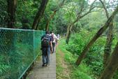 桐花公園~火焰山:DSC_6645.JPG