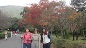 天母古道-七星公園:CIMG3607.JPG