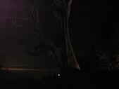 塔塔加3連峰完成&獅子座流星雨:PB180242