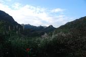 南子吝、石梯坑山、南雅奇岩:DSC_6410.JPG