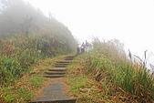 五分山&望古山:DSC_0450.JPG