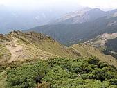 合歡北峰、西峰:P3310296