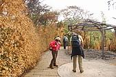 象山~九五峰:DSC_0958.JPG
