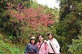 四天王山、獨立山:DSC_3778.JPG