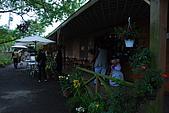 紫色角落~新社花園城堡~新社薰衣草森林:DSC_4430.JPG