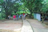 桐花公園~火焰山:DSC_6659.JPG