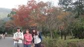 天母古道-七星公園:CIMG3609.JPG