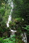 娟絲瀑布~竹篙山:DSC_0276.JPG
