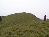 合歡北峰、西峰:P3310233