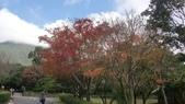 天母古道-七星公園:CIMG3606.JPG