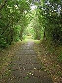 桃源谷步道-大溪線、草嶺線:PB050016