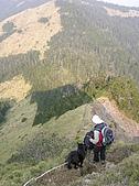 合歡北峰、西峰:P3310098