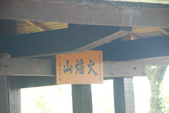 桐花公園~火焰山:DSC_6666.JPG