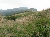 桃源谷步道-大溪線、草嶺線:PB050034