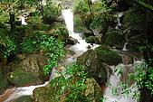 娟絲瀑布~竹篙山:DSC_0277.JPG