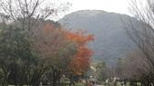 天母古道-七星公園:CIMG3614.JPG