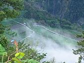 2006-01-30-南橫(粟松溫泉)、小野柳:南橫-摩天農場
