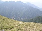合歡北峰、西峰:P3310234