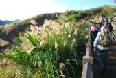 南子吝、石梯坑山、南雅奇岩:DSC_6422.JPG