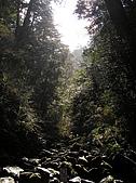 拉拉山、塔曼山:P2220542