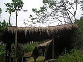 會走路的樹~巒山部落:P3220286