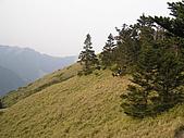 合歡北峰、西峰:P3310081