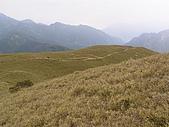 合歡北峰、西峰:P3310278