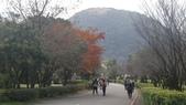 天母古道-七星公園:CIMG3615.JPG