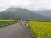 牧夫閣、蝴蝶谷、佐倉步道(Day 4):P3230407