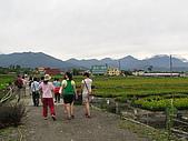 5.阿滿姨庄腳菜(澀水社區)、台一種苗場:P6101711