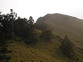 合歡北峰、西峰:P3310082
