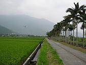 關山環鎮自行車道:PA070500
