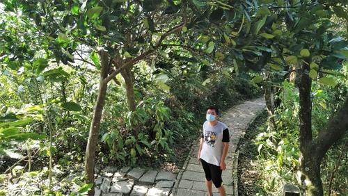 110.6.18.大安.九五峰 (261).jpg - 110.6.18.大安森林公園.九五峰