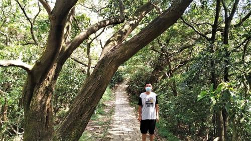 110.6.18.大安.九五峰 (112).jpg - 110.6.18.大安森林公園.九五峰