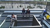 110.2.21.台中中央公園.中正大學:110.2.21.台中中央公園 (8).jpg