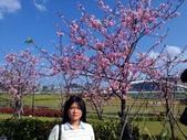 103.1.31.陽光運動公園:103.1.31.陽光運動公園 (8).jpg