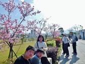 103.1.31.陽光運動公園:103.1.31.陽光運動公園 (13).JPG