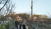 110.1.31.中社花市.月眉糖廠:110.1.31.中社花市.月眉糖廠 (4).jpg
